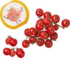 Pomodori ciliegia ramati