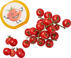 Cherry-Rispentomaten