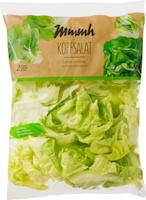 Mmmh Kopfsalat