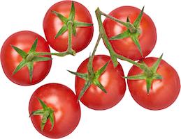 Tomates cerises en grappe