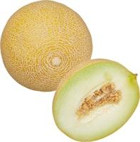 Melon Galia