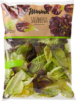 Mmmh Salat Salanova rot