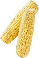 Maïs doux frais