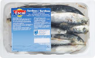Sardine Escal