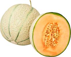 Meloni Charentais
