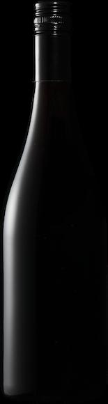 Die Weinmacher Blauer Zweigelt Zurück