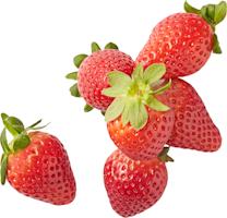 Erdbeeren Premium