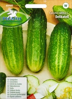 Gemüsesamen Salatgurke Delikatess