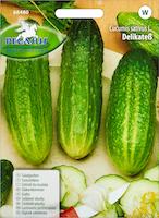 Semences de concombre Délicatesse
