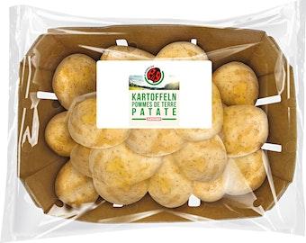 IP-SUISSE Kartoffeln
