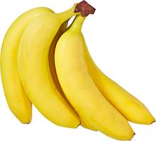 Bananes Rainforest Alliance