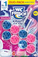 Bloc nettoyant WC Frisch Kraft-Aktiv