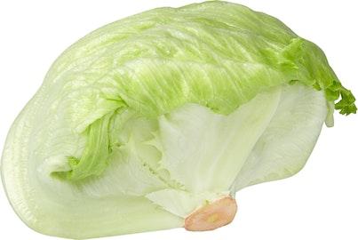 Lattuga iceberg